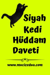 Siyah Kedi Hüddam Daveti