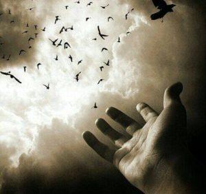 Hz. Yakup'un Hasret Duası